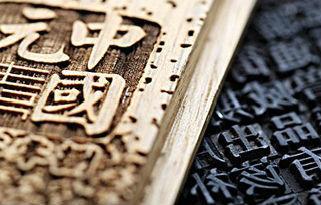 初中语文基础知识阅读知识大全